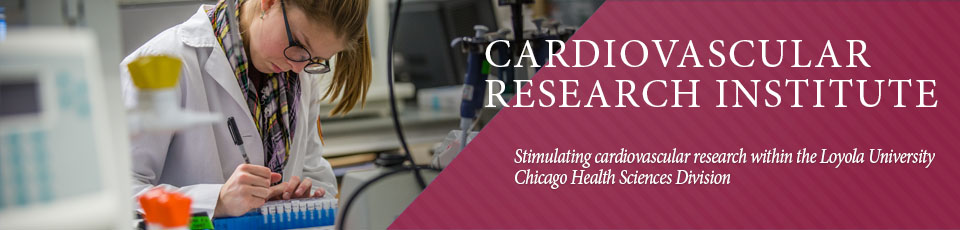 Stimulating cardiovascular research, broadly defined, within the Loyola University Chicago Health Sciences Division