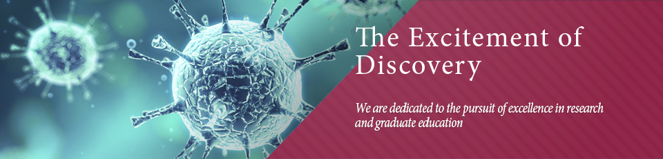 We are dedicated to the pursuit of excellence in research 
